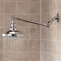 Shower Filter with Extension Arm